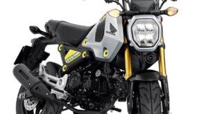 2021 Honda Grom front look