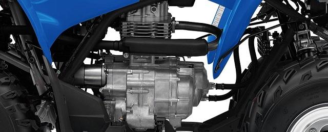 2021 Honda TRX250X engine