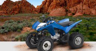 2021 Honda TRX250X front